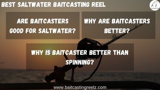 FAQ's - Best Saltwater Baitcasting Reel