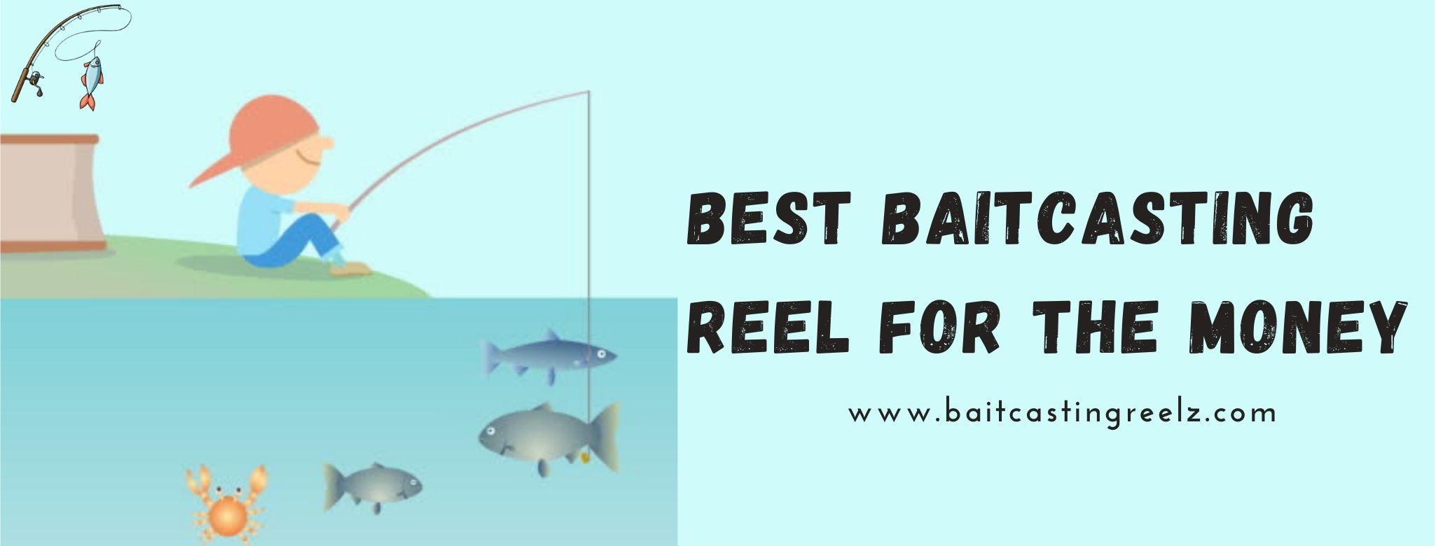 best baitcasting reel for the money