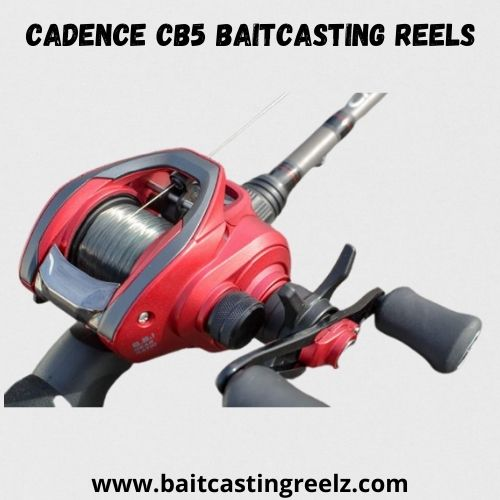 Cadence CB5 Baitcasting Reels - best for quick fishing