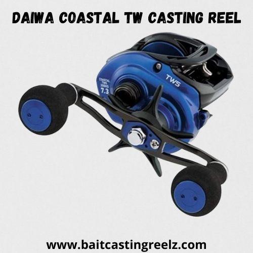 Daiwa Coastal TW Casting Reel - best for heavy fish