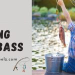 Best Baitcasting Reel For Bass 2021 | In-Depth Reviews | Baitcastingreelz.com