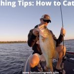BASS FISHING TIPS: HOW TO CATCH A BASS?