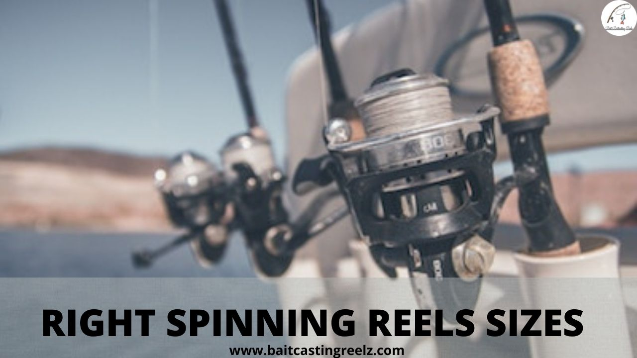 right spinning reel sizes