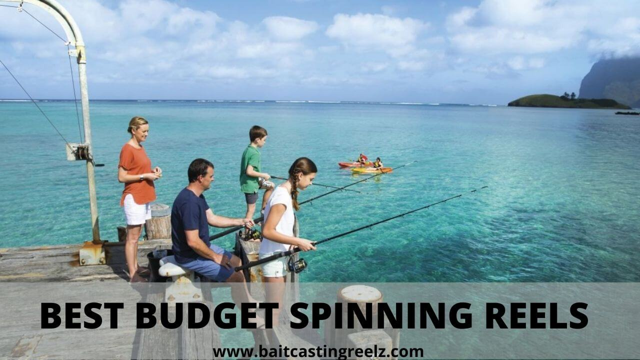 best budget spinning reel for the money
