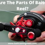 Baitcasting Reel Parts - (Briefly Explained For Beginners)
