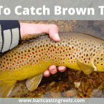 How To Catch Brown Trout