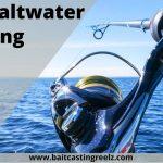 Best Saltwater Spinning Reels 2021 (Top Inshore Fishing Reels)