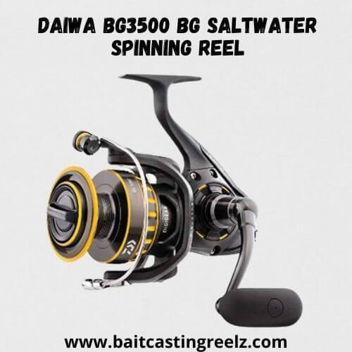 Daiwa BG3500 BG Saltwater Spinning Reel