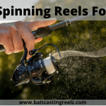 Best Spinning Reel For Bass 2021 (Highly Recommended For Bass Fishing)