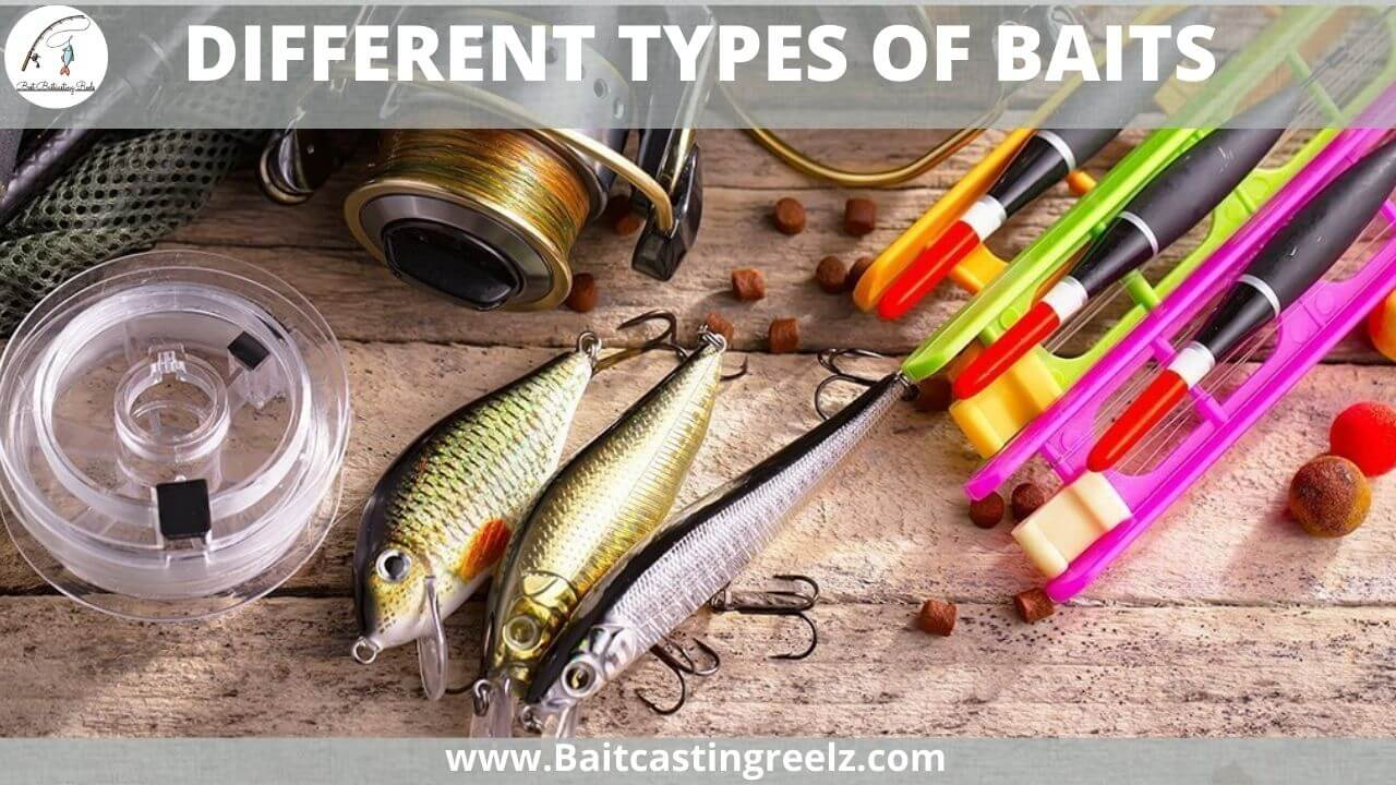 DIFFERENT TYPES OF BAITS