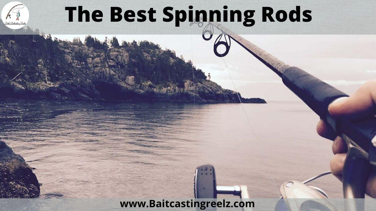 The best spinning rods