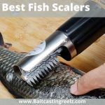 The Best Fish Scalers 2021 [Scaling Knife For Your Next Fishing Trip]